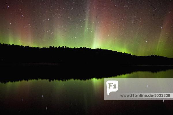 Polarlicht  Algonquin Provincial Park  Aurora