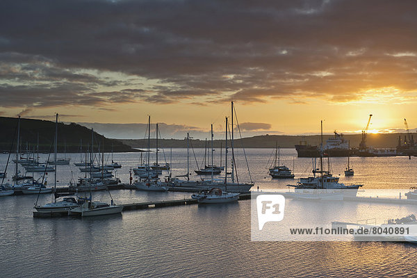 Sunrise in harbor  Falmouth  Cornwall  England  United Kingdom