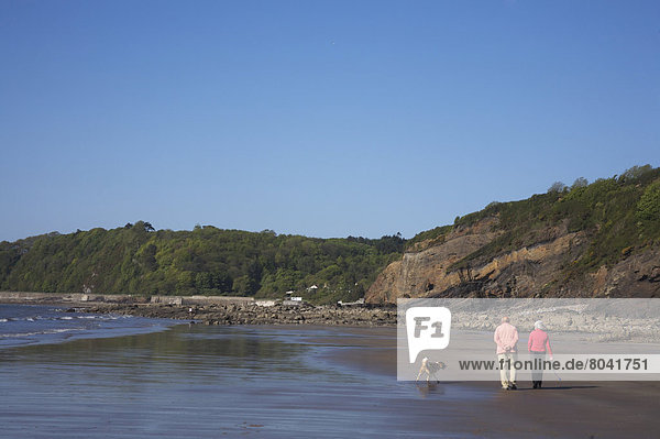 Frau  Mann  gehen  Strand  Großbritannien  Hund  Rückansicht  Ansicht  Wales