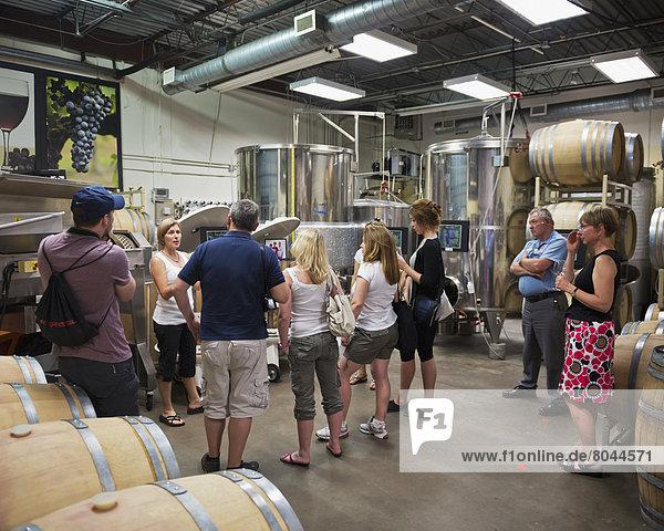 Vereinigte Staaten von Amerika USA Weingut Wein Tagesausflug Verkostung Bach Boulder Colorado