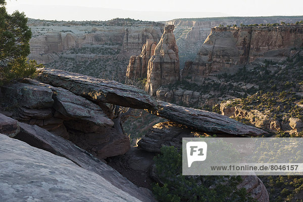 Magnificent views of sheer rock canyons and red sandstone monoliths  Colorado National Monument  Colorado  USA