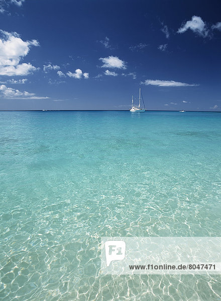 Segeln  Wasser  Boot  vertäut  seicht  Barbados