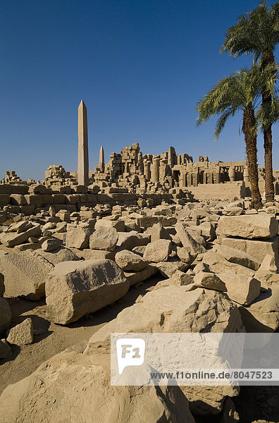 Looking across large area of assorted stones from ruins of Karnak Temple  Precinct of Amun  Luxor  Egypt