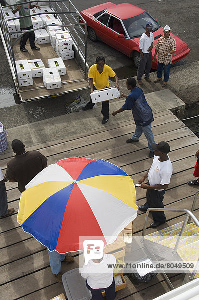 Passengers and food supplies being checked onboard Osprey Express Ferry  Grenada  Caribbean