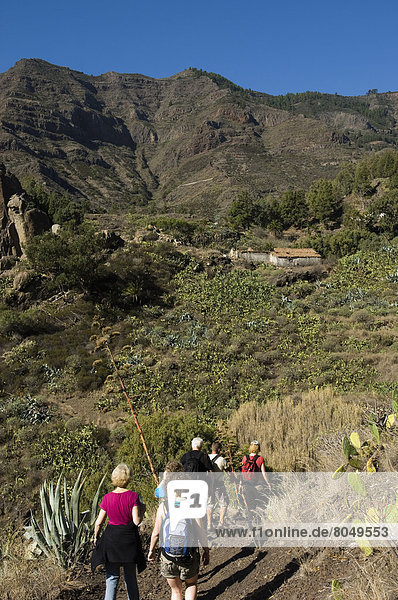 Rear view of tourists in Integral Nature Reserve   Santiago Ravine  La Gomera  Canary Islands  Spain