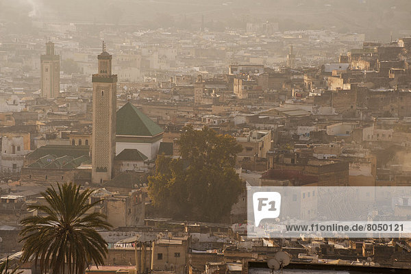Fès  Fez  sehen  Morgendämmerung  Fes  Marokko  Moschee