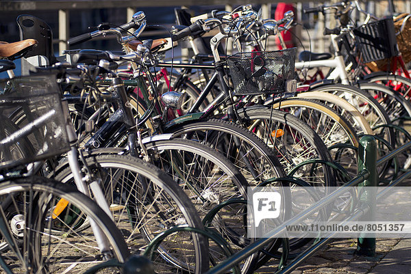 Dänemark  Kopenhagen  Hauptstadt  Fahrrad  Rad