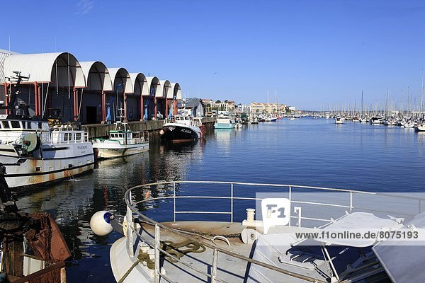 Arcachon (Gironde  Aquitaine  France): the fishing port and its boats