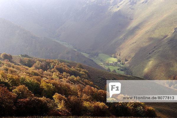 Feuerwehr  Tal  Wald  Ansicht  Pyrenäen