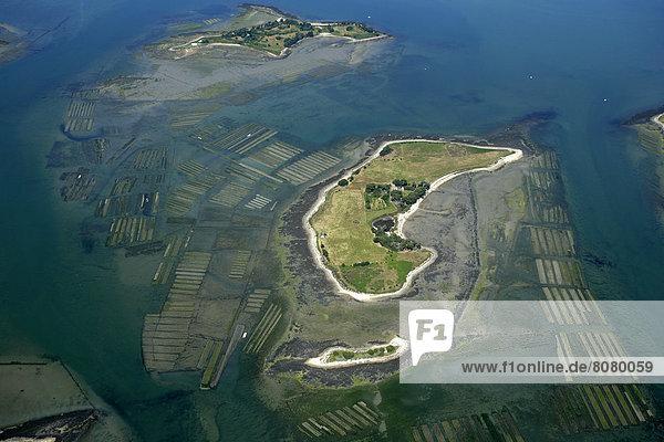 Verletzung der Privatsphäre  über  Nostalgie  Insel  Wiederholung  Ansicht  Autorisierung  verboten  Luftbild  Fernsehantenne  Morbihan