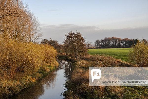 Kleiner Fluss am Niederrhein  Nordrhein-Westfalen  Deutschland