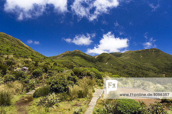 Ausblick von der Pouakai Hut auf den Gipfel des Pouakai