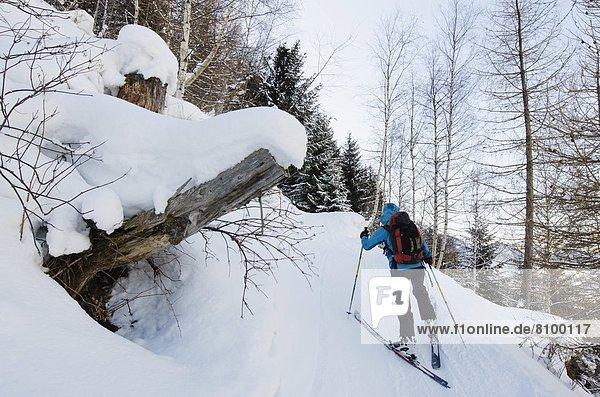 Skibergsteigen  Frankreich  Europa  Französische Alpen  Chamonix  Haute-Savoie