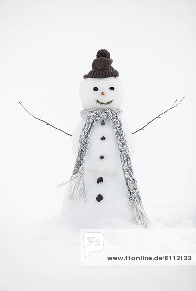 Snowman wearing knit hat and scarf