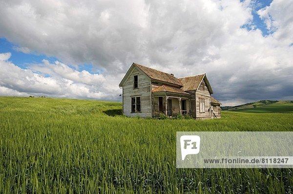 Vereinigte Staaten von Amerika USA Haufenwolke Wohnhaus Bauernhof Hof Höfe Feld verlassen Weizen Washington State