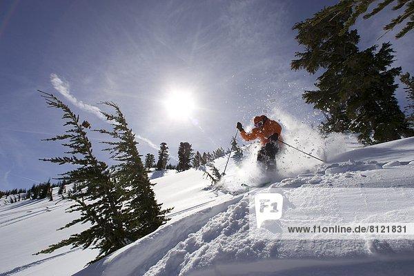 Vereinigte Staaten von Amerika  USA  Außenaufnahme  Einzelperson  eine Person  Wintersport  Textfreiraum  Berg  Mann  Farbaufnahme  Farbe  Sport  Tag  Freizeit  Ski  Blendenfleck  lens flare  Winterkleidung  Kälte  Erwachsener  Kalifornien  freie Natur  Schnee