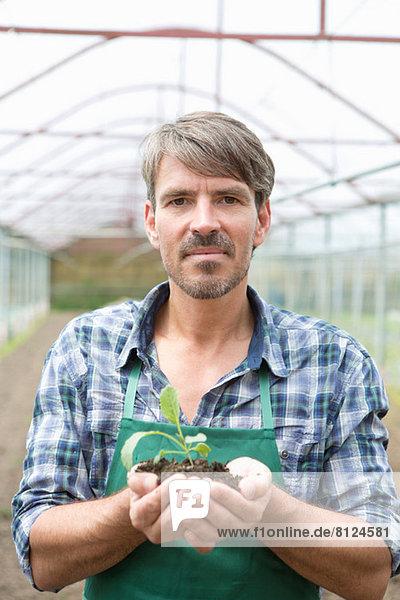 Porträt eines Biobauern mit Setzling im Polytunnel