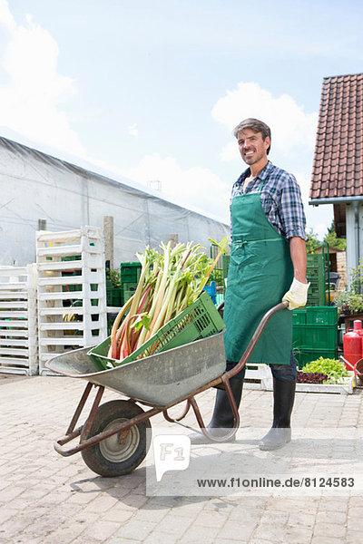 Portrait eines Bio-Bauern mit Schubkarre aus Rhabarber