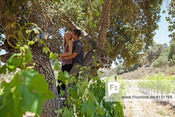 Junges Paar im Weinberg umarmt unter einem Baum