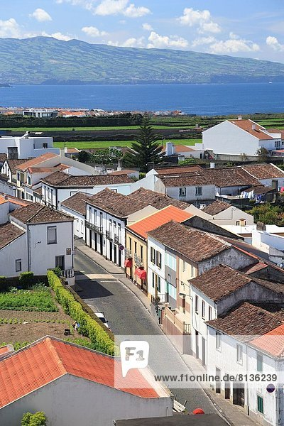The parish of Ribeirinha  as seen from the top of the church tower. Sao Miguel island  Azores  Portugal.