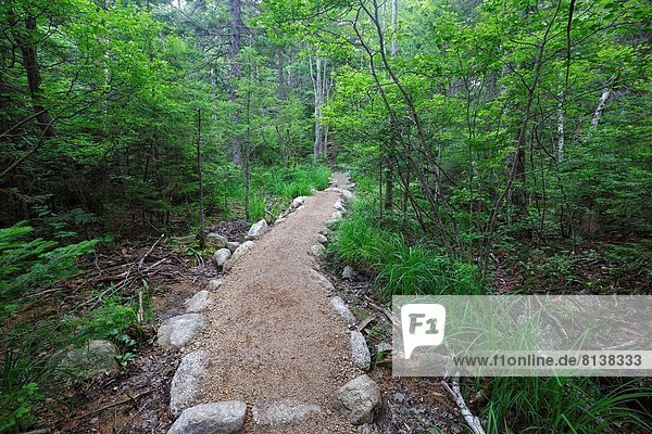 Low impact stonework along Sugarloaf Trail in Bethlehem  New Hampshire USA during the summer months.