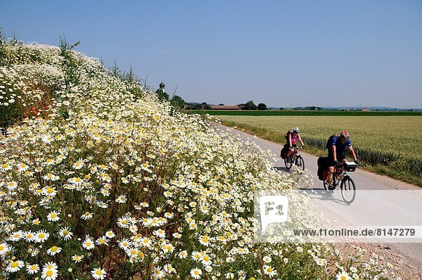 Bike path in the Allgäu