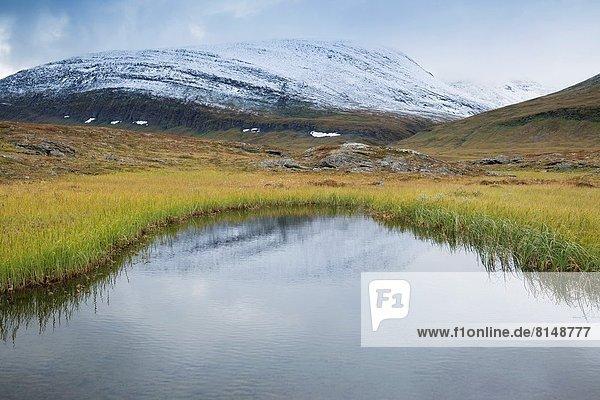 Small pond near Sälka mountain hut along Kungsleden trail  Lappland  Sweden.