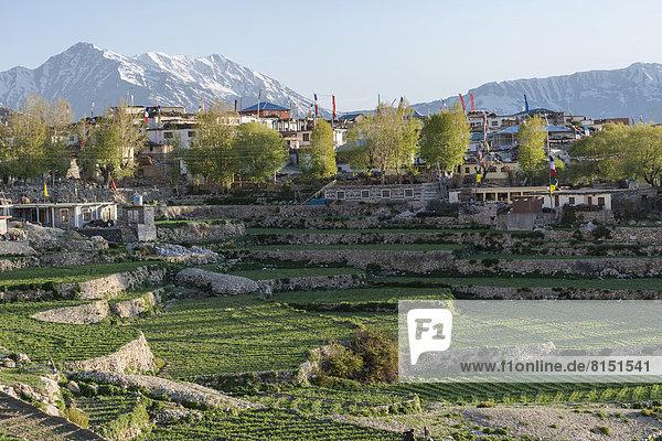 Berg bedecken grün Dorf Feld umgeben Schnee