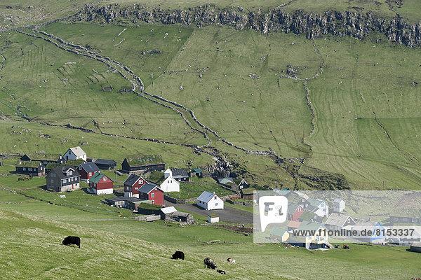 Dorf Wiese