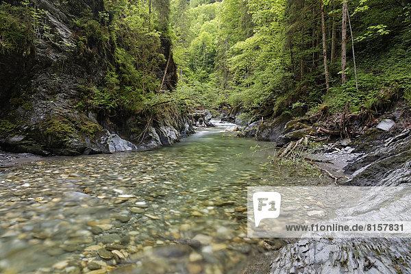 Österreich  Steiermark  Blick ins Ennstal