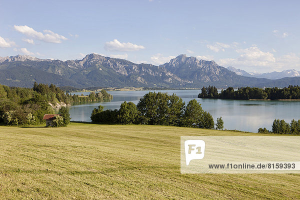 Germany  Bavaria  View of idyllic landscape at Forggensee