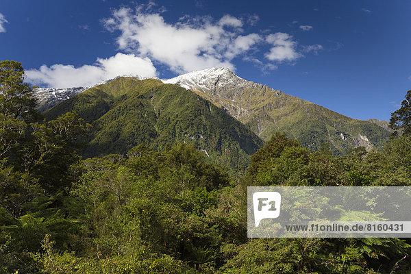 Schneebedeckter Mount Cuttance  1436m