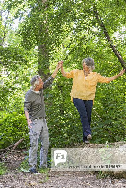 Senior  Senioren  Wald  wandern