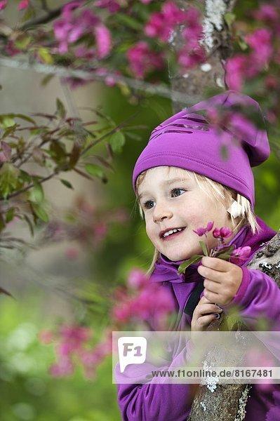 Girl picking purple flowers