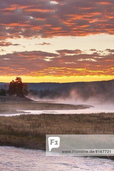 Foggy landscape at sunset