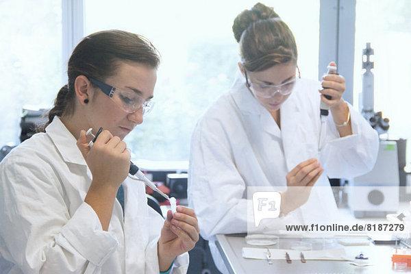 Biologiestudenten bei der Arbeit mit Pipetten im Labor