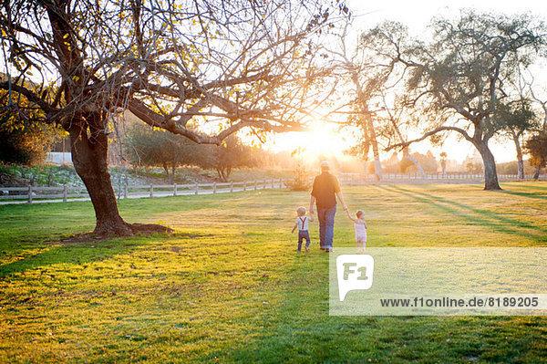 Vater wandert mit Sohn und Tochter im sonnigen Feld