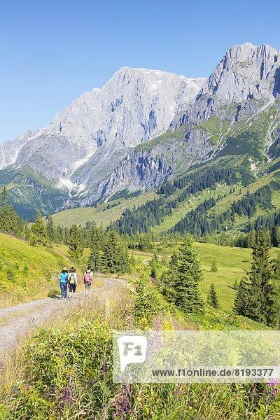 Drei junge Frauen beim Bergwandern  Hochkönig  Berchtesgadener Alpen  Salzburger Land  Österreich  Europa