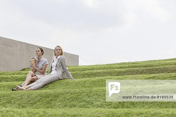 Stufe  sitzend  Himmel  Länge  Wirtschaftsperson  Gras  Business  voll