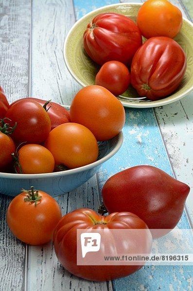 Tomaten in einer Schale  Brandenburg  Deutschland  Europa
