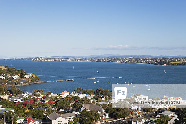 Neuseeland  Auckland  Blick auf St. Heliers Bay