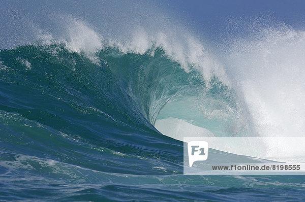 USA  Hawaii  Welle an der Nordküste