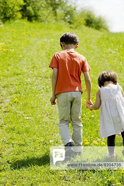 Bruder und Schwester gehen Hand in Hand durchs Feld