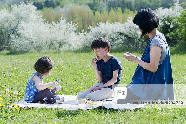 Mutter und Kinder beim Picknick auf der Wiese