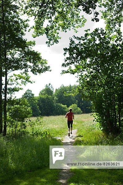 Mann  rennen  Wald  Schweden
