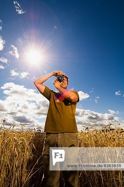 Mann  Fotografie  nehmen  Feld  Schweden