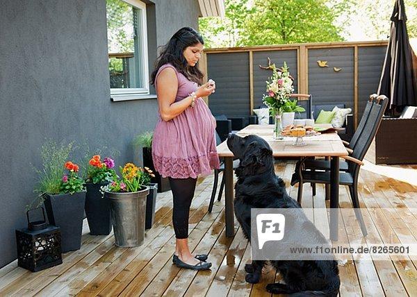 Frau Hund Veranda füttern