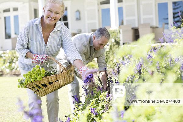 Seniorenpaar pflückt Blumen im Garten