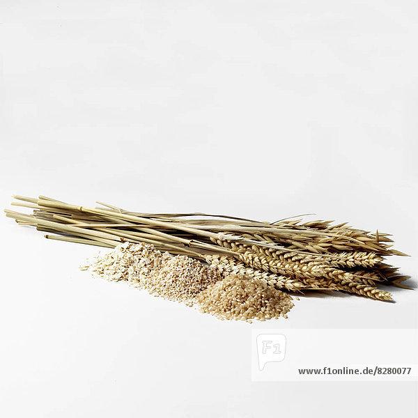Reis  Reiskorn  Weizen  Sellerie  braun