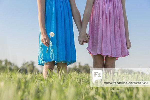 Zwillingsschwestern halten sich an den Händen in einem sonnigen Feld  flacher Blickwinkel